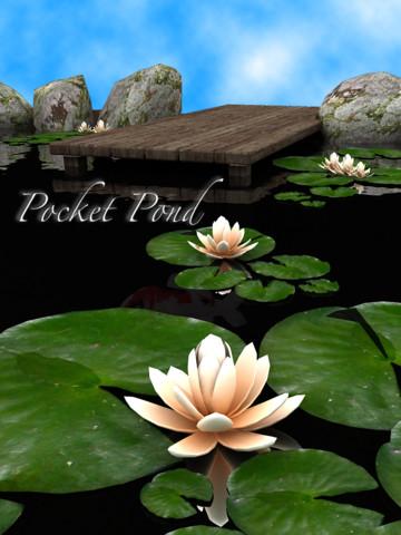 pocketpond1